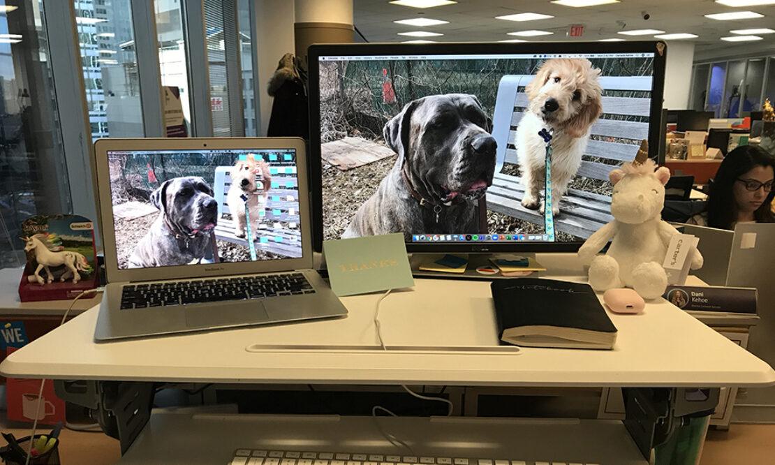 Dani's Desk