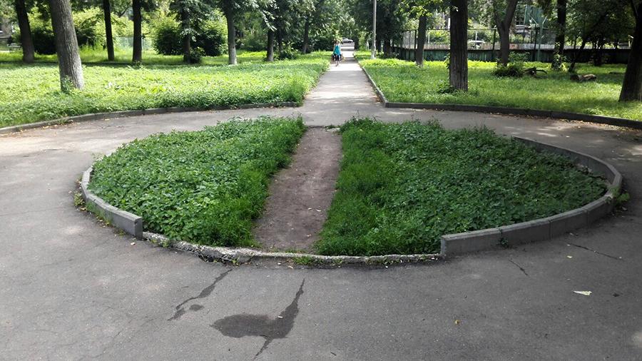 A path worn thought a grass median